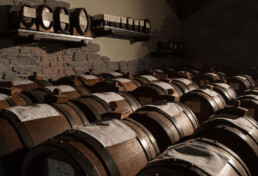 Battery Balsamic Vinegar of Modena